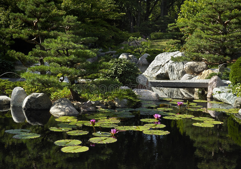 κήπος ιαπωνικά γεφυρών στοκ φωτογραφίες με δικαίωμα ελεύθερης χρήσης