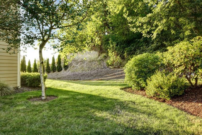 Κήπος κατωφλιών με το δέντρο σημύδων στοκ φωτογραφία με δικαίωμα ελεύθερης χρήσης