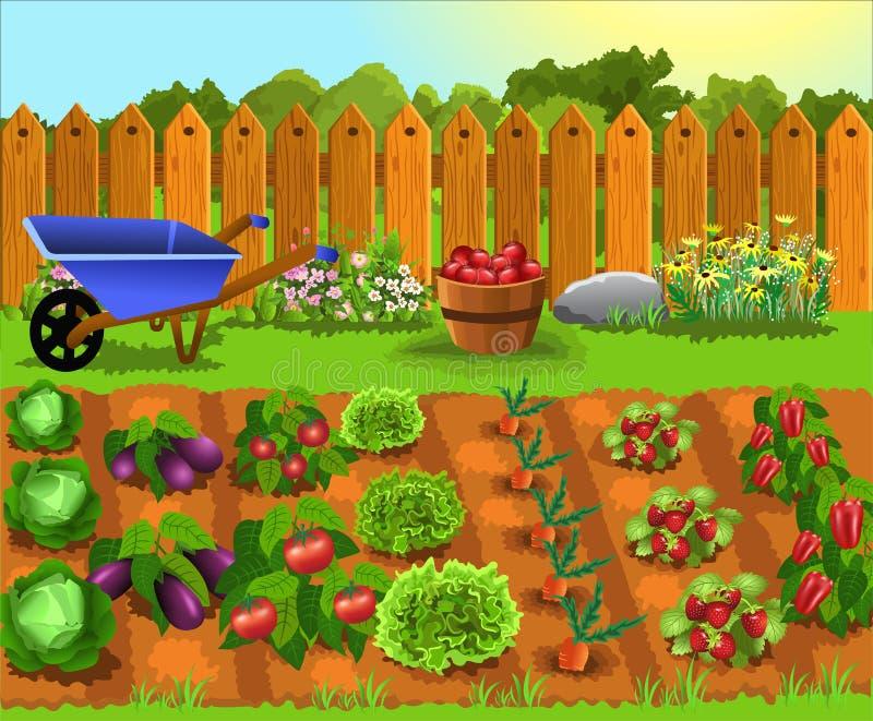 Κήπος κινούμενων σχεδίων με τα φρούτα και λαχανικά διανυσματική απεικόνιση