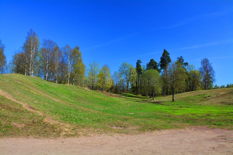 Κήπος κοινοβίων κοντά στο παλάτι κοινοβίων Γκάτσινα Πετρούπολη Ρωσία ST στοκ εικόνες με δικαίωμα ελεύθερης χρήσης