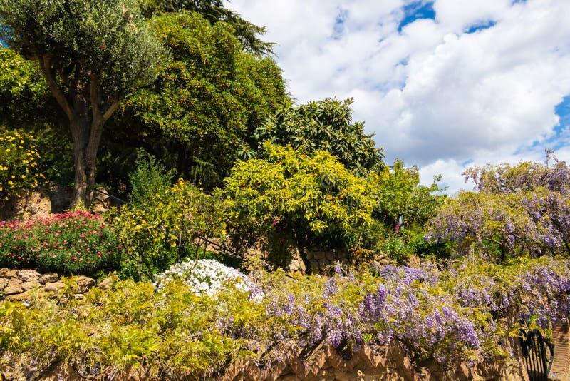Κήπος με τα διάφορες λουλούδια και τις εγκαταστάσεις στο πάρκο GÃ ¼ EL, Βαρκελώνη - εικόνα στοκ εικόνα