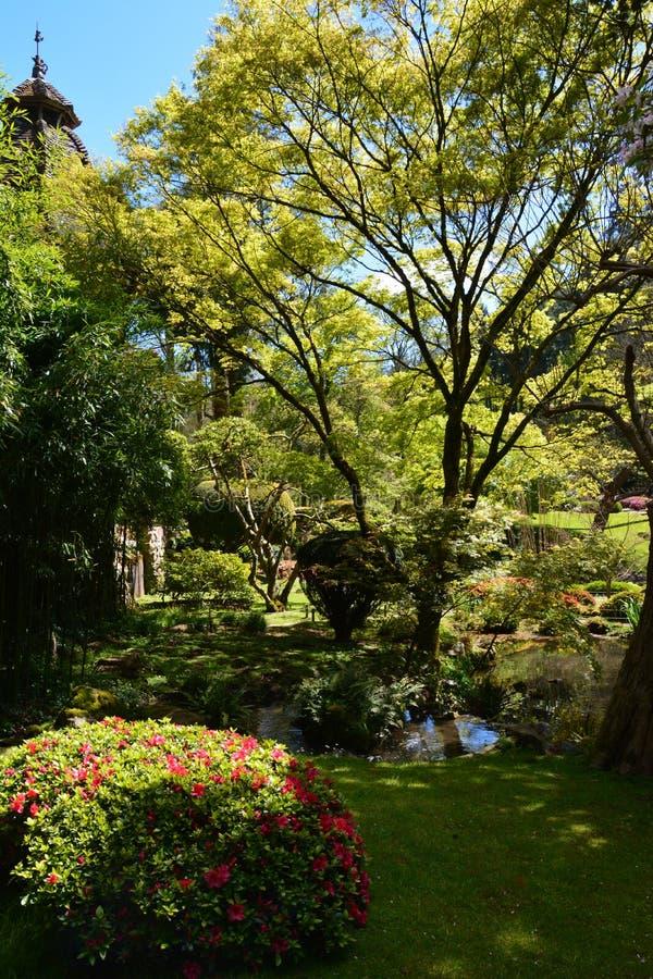 κήπος οικείος στοκ φωτογραφίες με δικαίωμα ελεύθερης χρήσης