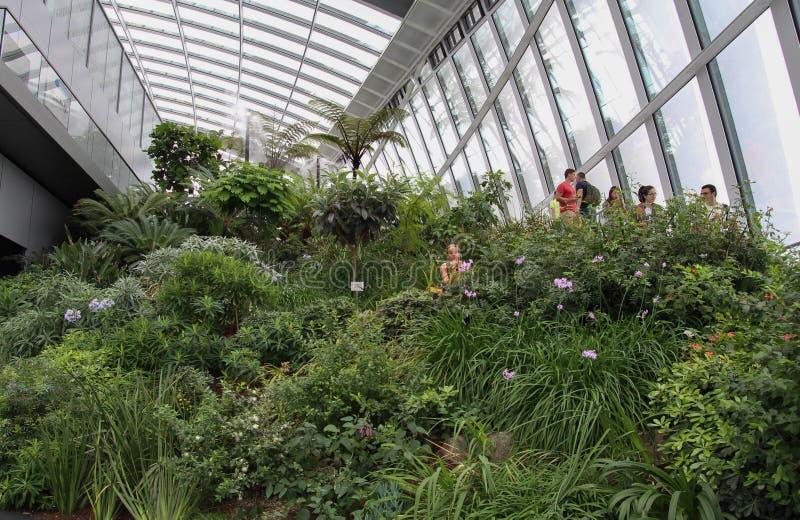 Κήπος ουρανού και υπαίθριο πεζούλι στοκ εικόνα