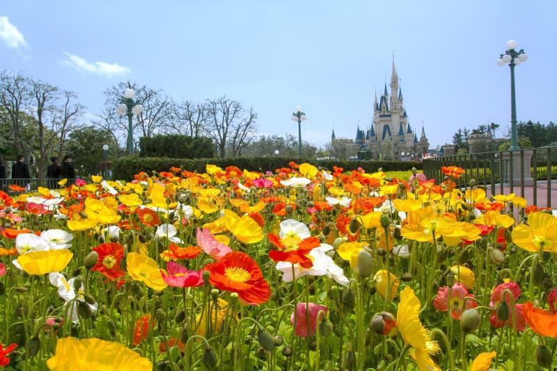 Κήπος λουλουδιών στο Τόκιο Disneyland στοκ εικόνες