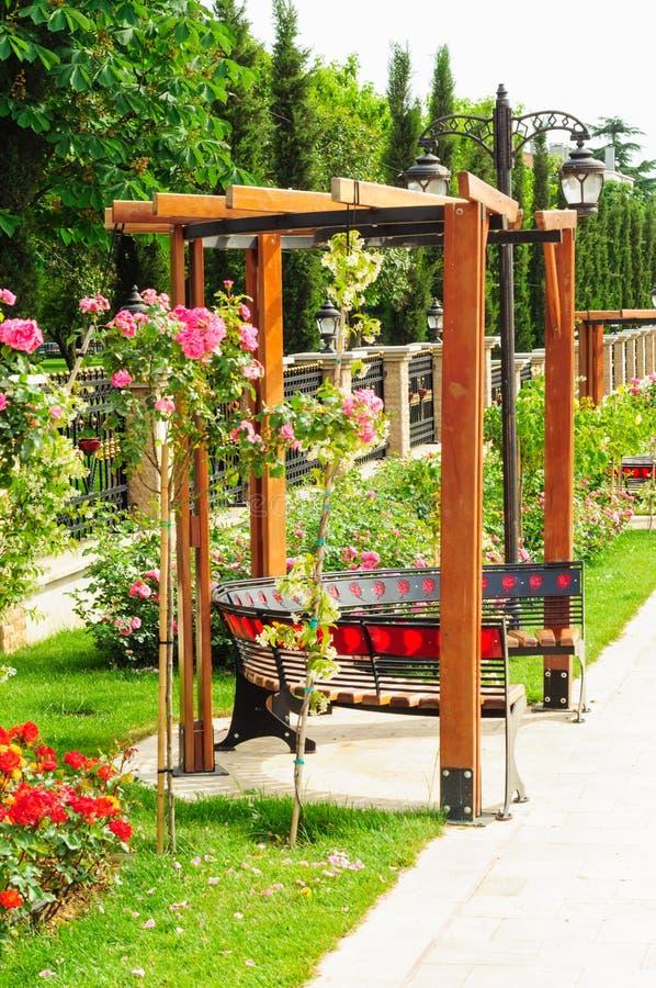 Κήπος περγκολών των τριαντάφυλλων στοκ εικόνες με δικαίωμα ελεύθερης χρήσης