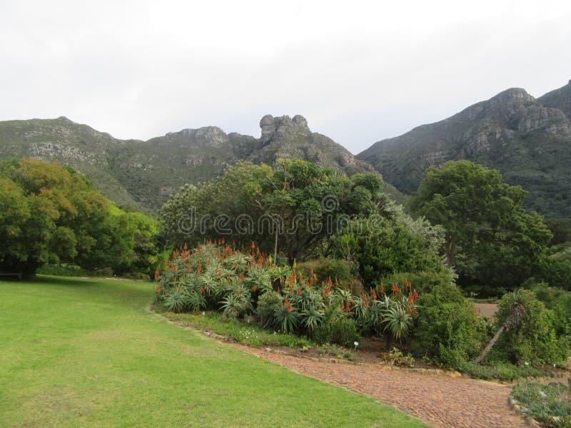 Κήπος που κοιτάζει επάνω στο Καστλ Ροκ στοκ εικόνα
