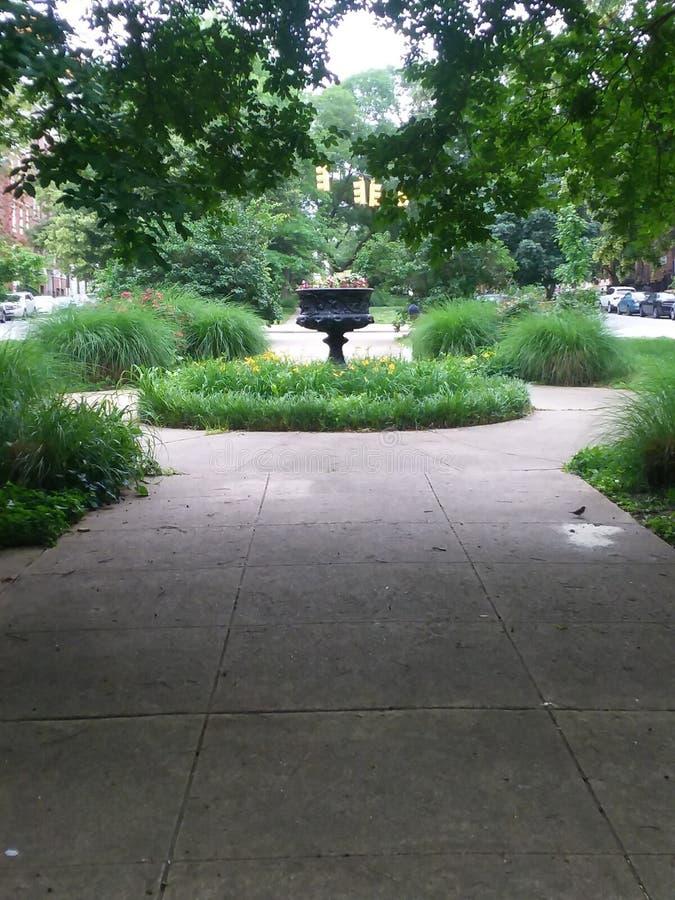 Κήπος στην πόλη της Βαλτιμόρης στοκ φωτογραφία