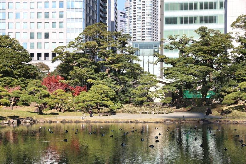 Κήπος στο Τόκιο στοκ εικόνες