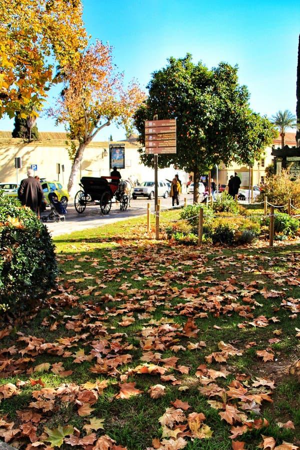 κήπος της Κόρδοβα στοκ εικόνα με δικαίωμα ελεύθερης χρήσης