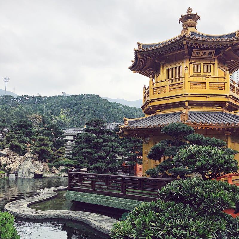 Κήπος της Lian γιαγιάδων, Χονγκ Κονγκ στοκ φωτογραφία με δικαίωμα ελεύθερης χρήσης