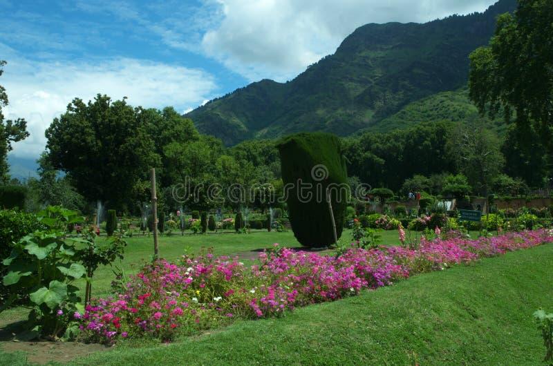 Κήπος τοπίο-7 Shalimar στοκ φωτογραφία