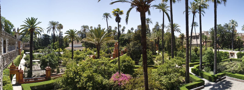 κήπος τροπικός στοκ εικόνα με δικαίωμα ελεύθερης χρήσης