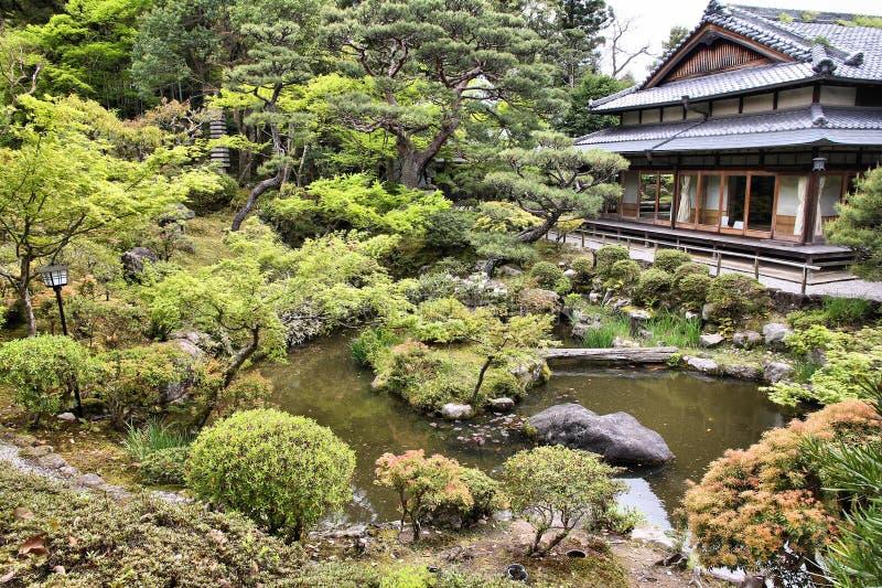 Κήπος τσαγιού στην Ιαπωνία στοκ εικόνα με δικαίωμα ελεύθερης χρήσης