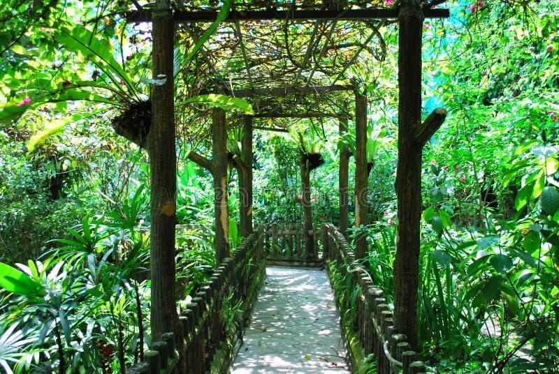 κήπος στοκ εικόνες με δικαίωμα ελεύθερης χρήσης