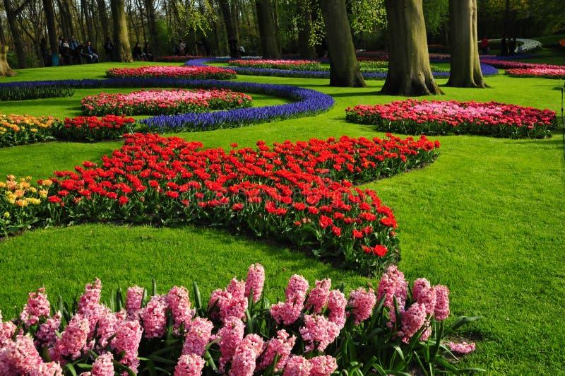 κήπος keukenhof Οι κήποι παγκόσμιων μεγαλύτεροι λουλουδιών, που τοποθετούνται σε Lisse, Κάτω Χώρες στοκ εικόνες