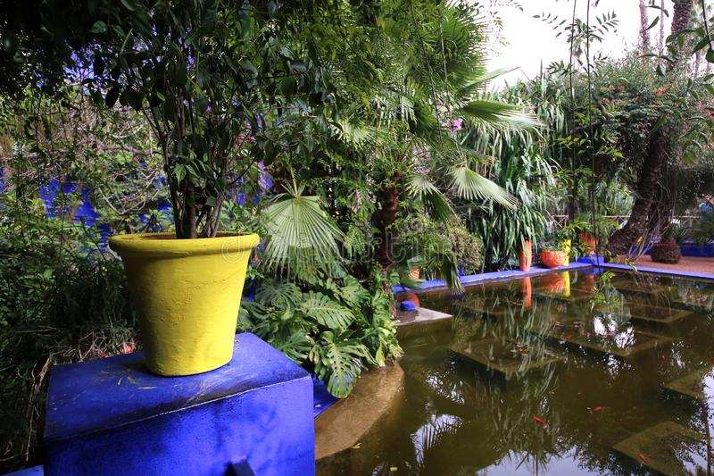 Κήπος Majorelle στο Μαρακές στοκ εικόνες
