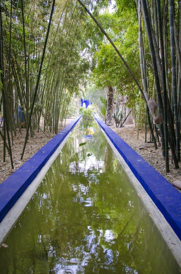Κήπος Majorelle, Μαρακές στοκ φωτογραφίες