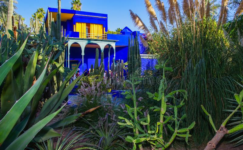 Κήπος Majorelle στο Μαρακές στοκ εικόνα με δικαίωμα ελεύθερης χρήσης