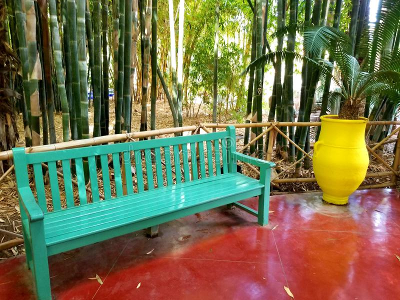 κήπος majorelle στοκ εικόνες με δικαίωμα ελεύθερης χρήσης