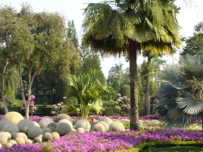 κήπος nong nooch τροπικός στοκ φωτογραφία με δικαίωμα ελεύθερης χρήσης