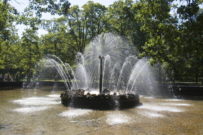 κήπος peterhof στοκ εικόνες