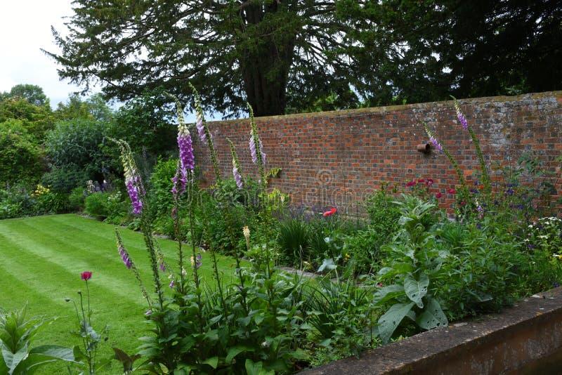 Κήπος Tintinhull, Somerset, Αγγλία, UK στοκ φωτογραφία