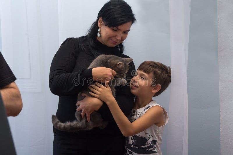 Κίεβο, Ουκρανία - 27 Αυγούστου 2016: Η μητέρα και ο γιος επιλέγουν μια γάτα σε ένα κατοικίδιο ζώο στοκ εικόνες