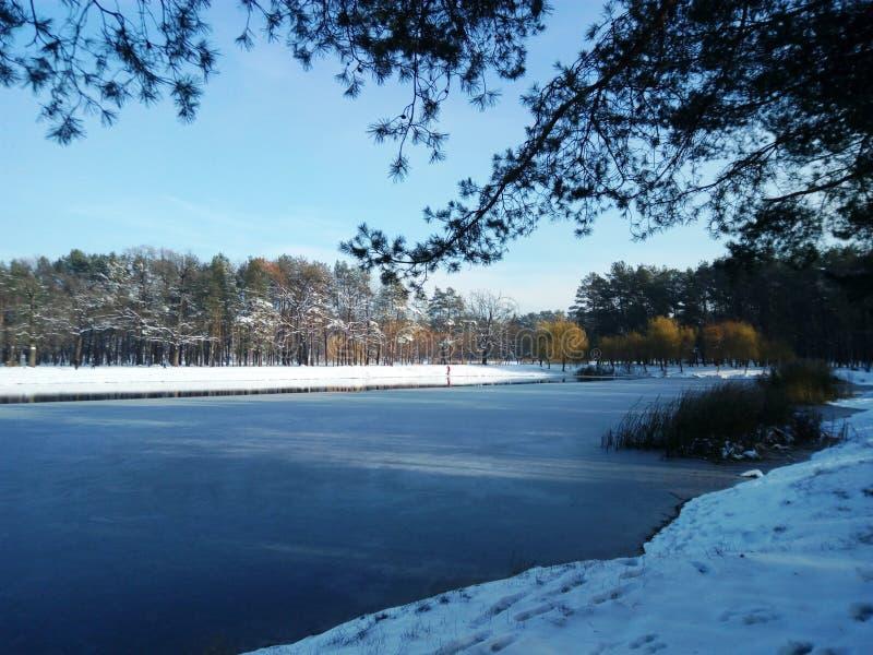 Κίεβο, χειμερινή λίμνη στοκ φωτογραφία με δικαίωμα ελεύθερης χρήσης