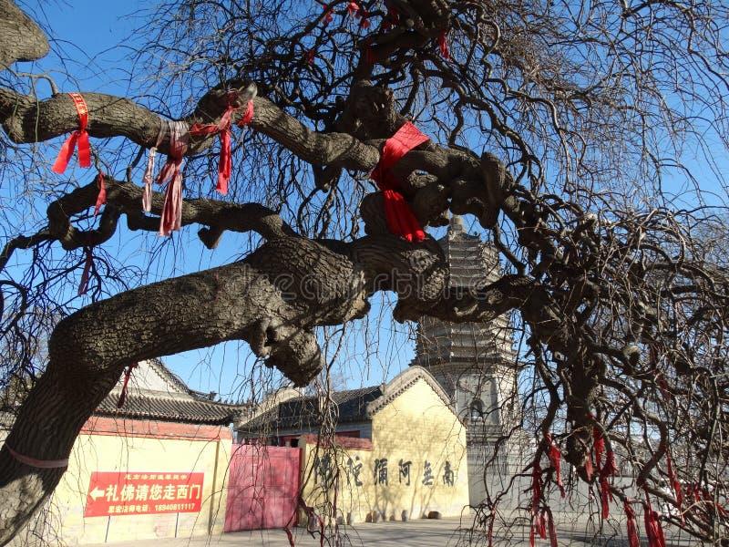 Κίνα dalian ο wafangdian κρατικός yongfeng πύργος στοκ φωτογραφίες με δικαίωμα ελεύθερης χρήσης