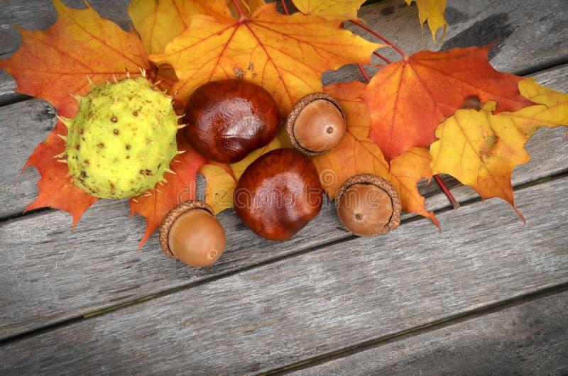 Κίτρινα και πορτοκαλιά φύλλα φθινοπώρου στο παλαιό ξύλινο υπόβαθρο στοκ φωτογραφία
