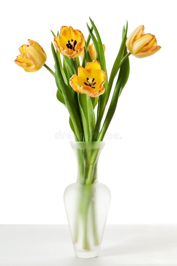 Κίτρινα κόκκινα πορτοκαλιά λουλούδια τουλιπών στοκ φωτογραφία