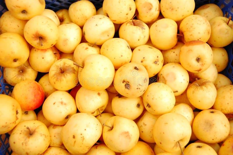 Κίτρινα μήλα στα κιβώτια στοκ φωτογραφίες με δικαίωμα ελεύθερης χρήσης
