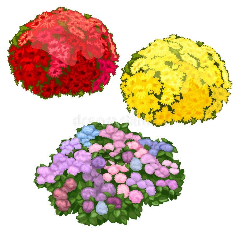 Κίτρινα, ρόδινα και κόκκινα κρεβάτια λουλουδιών που απομονώνονται ελεύθερη απεικόνιση δικαιώματος