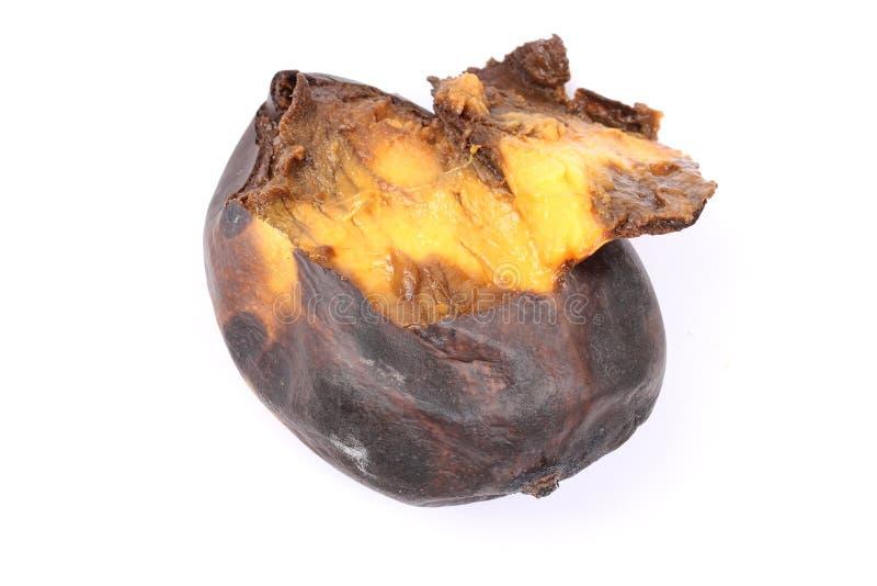 Κίτρινα σάπια μάγκο στοκ εικόνες με δικαίωμα ελεύθερης χρήσης