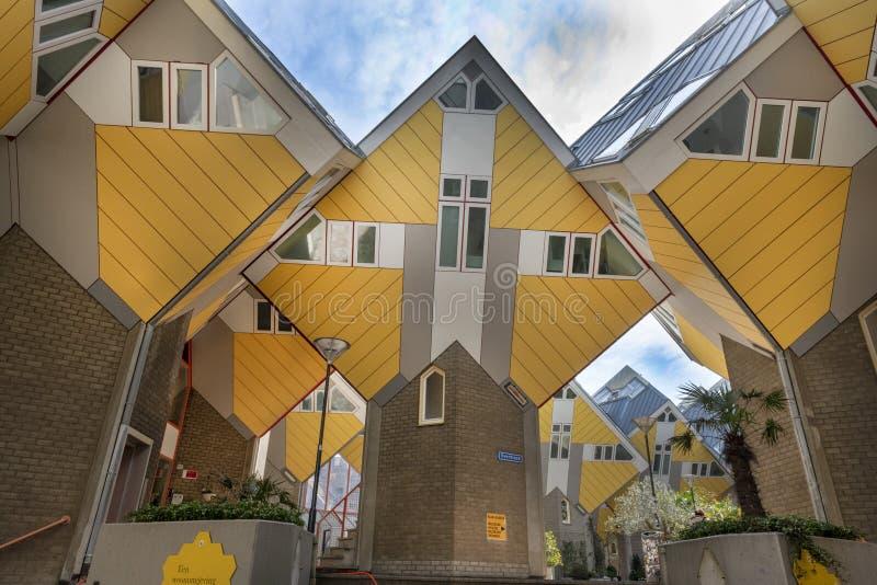 Κίτρινα σπίτια κύβων, Ρότερνταμ, Ολλανδία στοκ εικόνες με δικαίωμα ελεύθερης χρήσης