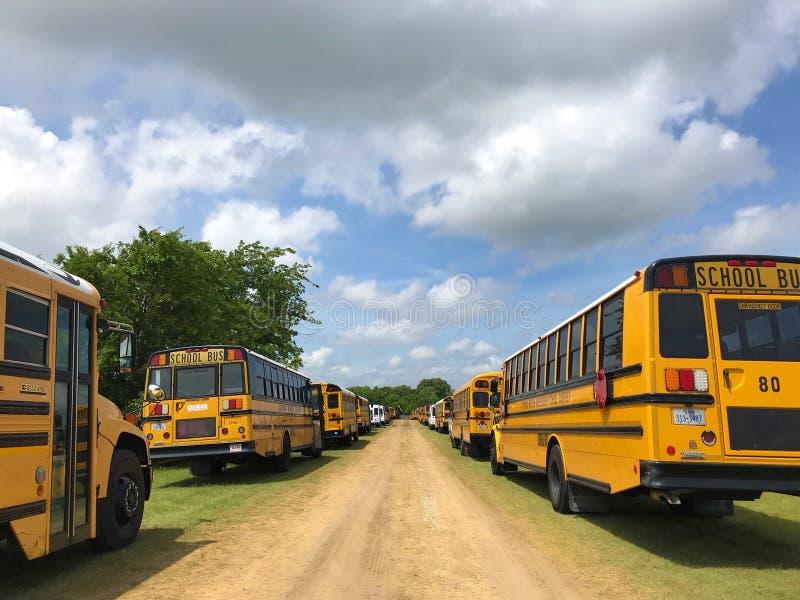 Κίτρινα σχολικά λεωφορεία στοκ φωτογραφία