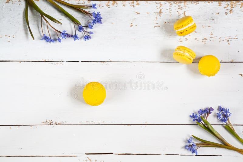 Κίτρινα macaroons lemmon και μπλε snowdrops λουλουδιών στο ελαφρύ ξύλινο υπόβαθρο στοκ εικόνα