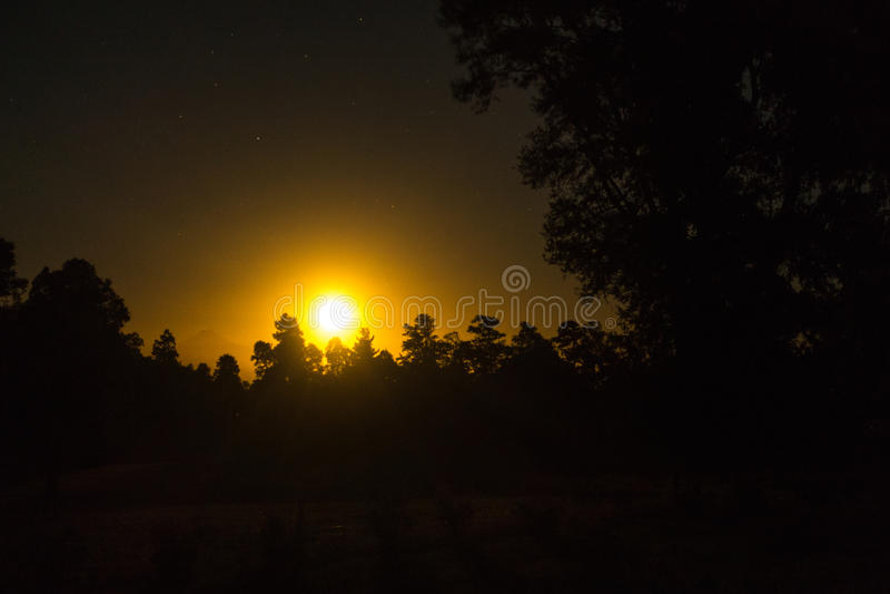 Κίτρινες άνοδοι φεγγαριών πίσω από το δάσος στοκ φωτογραφία με δικαίωμα ελεύθερης χρήσης