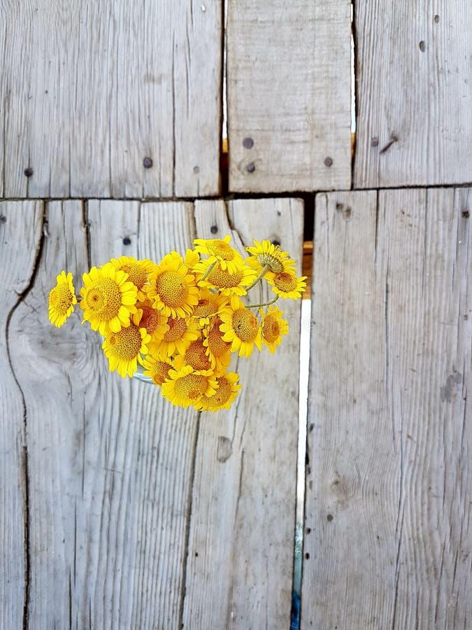 Κίτρινες μαργαρίτες σε ένα ξύλινο υπόβαθρο στοκ εικόνα