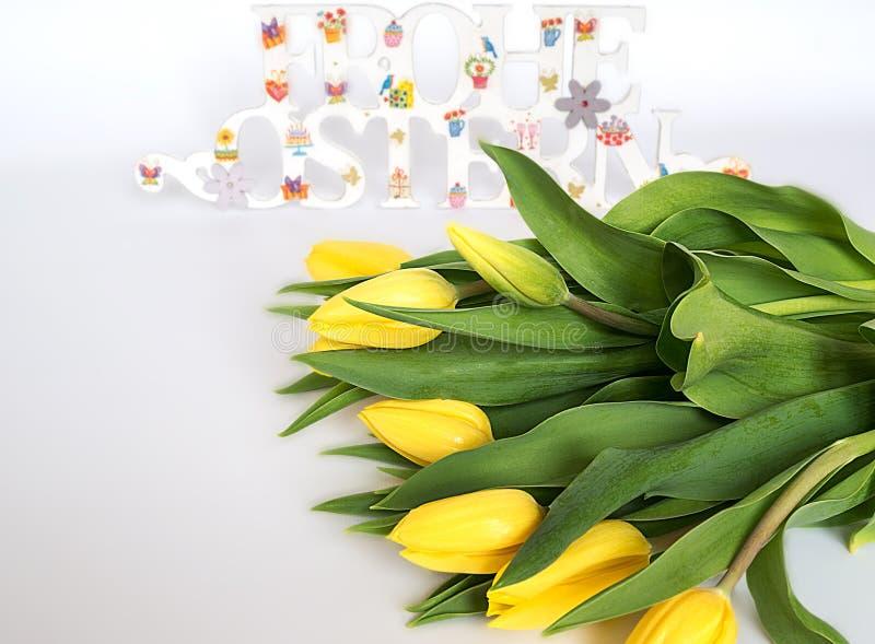 Κίτρινες τουλίπες με τα διακοσμημένα χρωματισμένα συγχαρητήρια ευτυχές Πάσχα στα γερμανικά στο άσπρο υπόβαθρο στοκ εικόνες με δικαίωμα ελεύθερης χρήσης