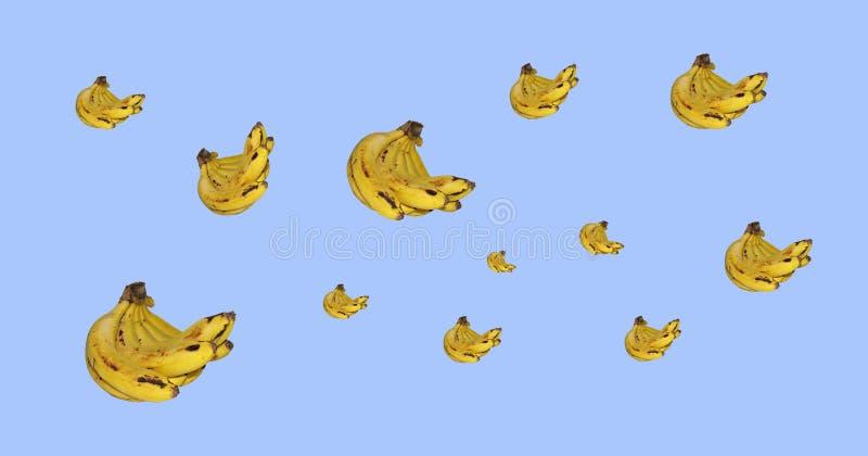 Κίτρινη έκρηξη μπανανών στοκ φωτογραφία με δικαίωμα ελεύθερης χρήσης