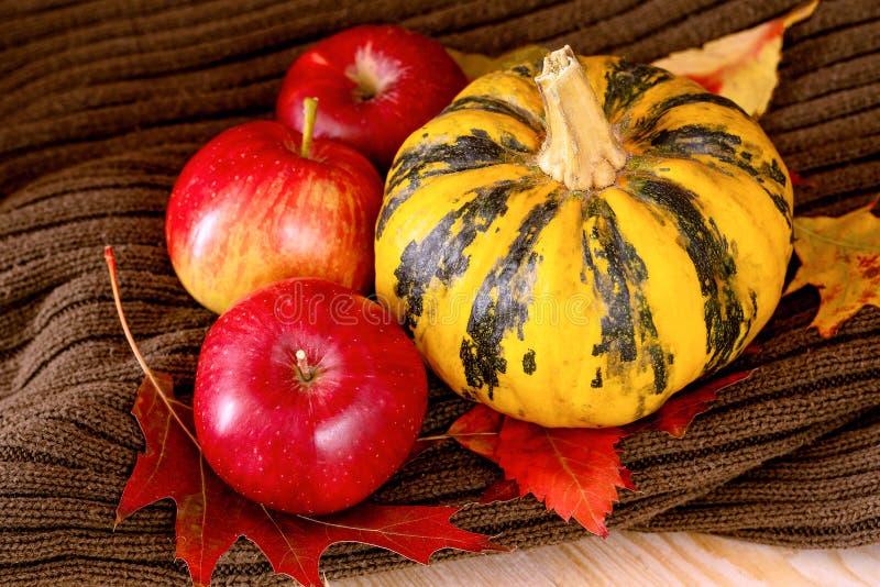 Κίτρινη διακοσμητική κολοκύθα, τρία κόκκινα μήλα και ζωηρόχρωμα φύλλα στοκ εικόνες με δικαίωμα ελεύθερης χρήσης