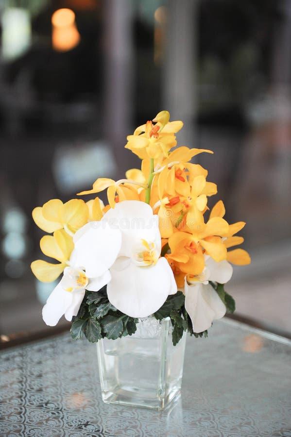 Κίτρινη και άσπρη ορχιδέα στο δοχείο στοκ εικόνες