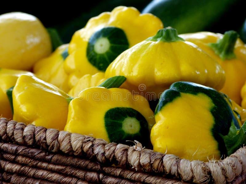 Κίτρινη και πράσινη κολοκύνθη Pattypan στοκ εικόνες