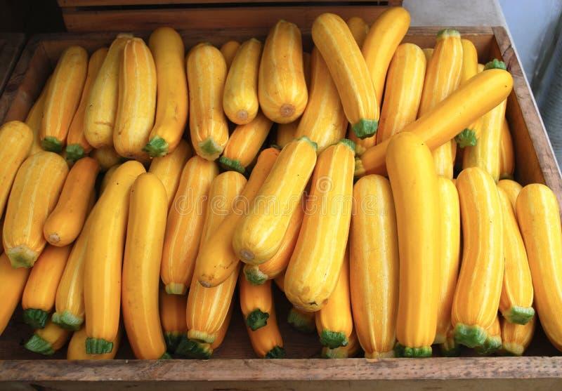 Κίτρινη κολοκύνθη θερινών κολοκυθιών - προϊόντα αγοράς αγροτών στοκ φωτογραφίες με δικαίωμα ελεύθερης χρήσης