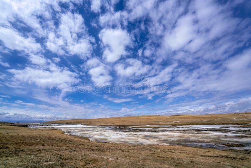 Κίτρινη χλόη ποταμών μπλε ουρανού άσπρη παγωμένη σύννεφα σε Bayanbulak την άνοιξη στοκ εικόνες