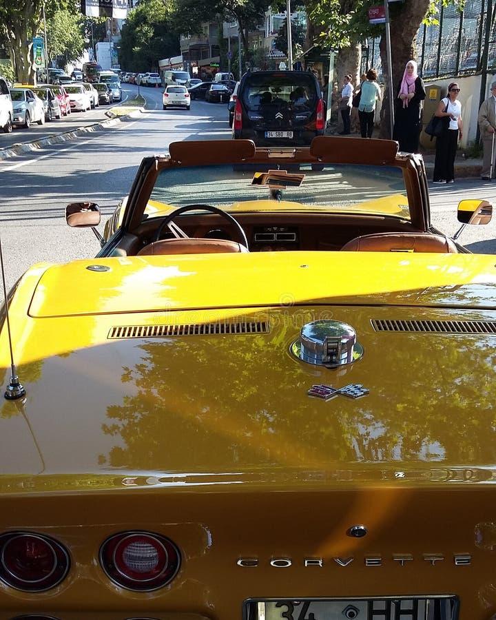 Κίτρινος δρόμωνας Ιστανμπούλ στοκ φωτογραφίες με δικαίωμα ελεύθερης χρήσης