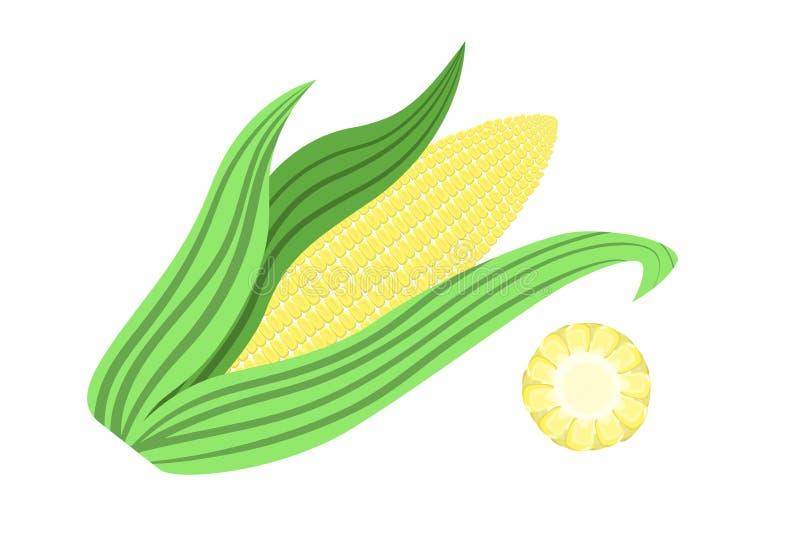 Κίτρινος σπάδικας καλαμποκιού Υγιές και φρέσκο οργανικό λαχανικό διανυσματική απεικόνιση