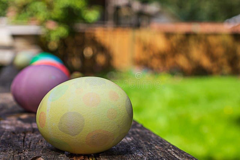 Κίτρινος τίτλος αυγών σημείων poka η γραμμή στοκ εικόνα με δικαίωμα ελεύθερης χρήσης