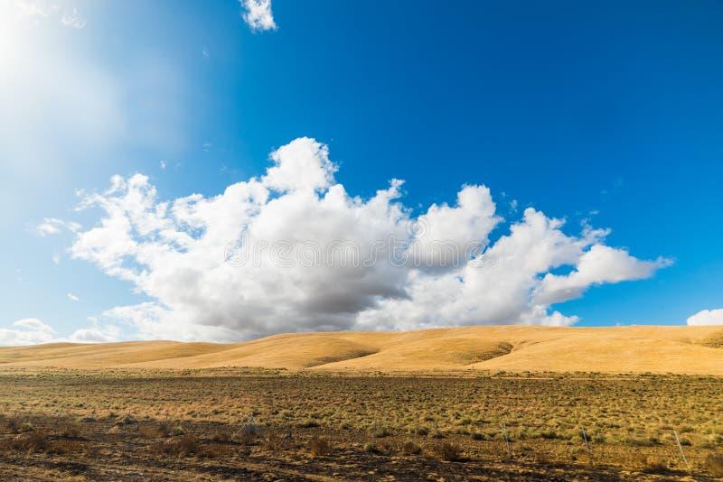 Κίτρινος λόφος κάτω από έναν μπλε ουρανό με τα σύννεφα στοκ εικόνα